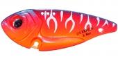 OR17-Sunset Tiger