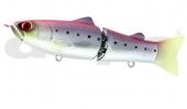 Pink Back Sardine