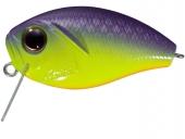 PP81-Chart Purple Back