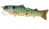 Splatter Sunfish